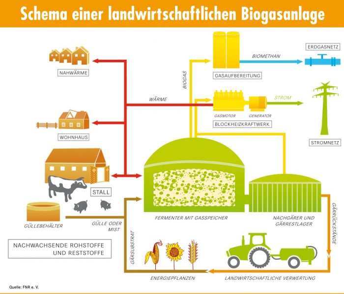 Biogasanlage_Schema_FNR_eV